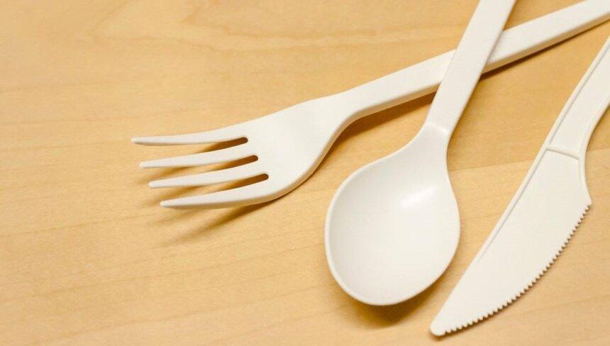 Almanya Tek Kullanımlık Plastik Ürünleri Yasaklıyor